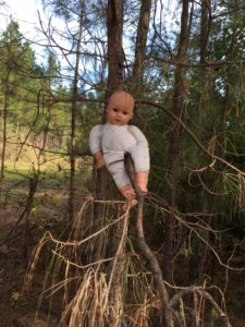 baby-in-tree